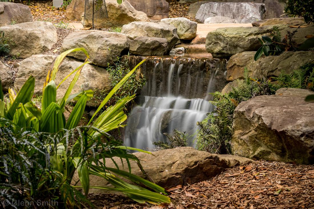 Glenn Smith Photography | Australian Botanical Gardens, Mount Annan ...